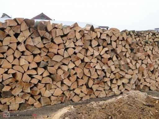 Drewno opałowe- buk, świerk, brzoza