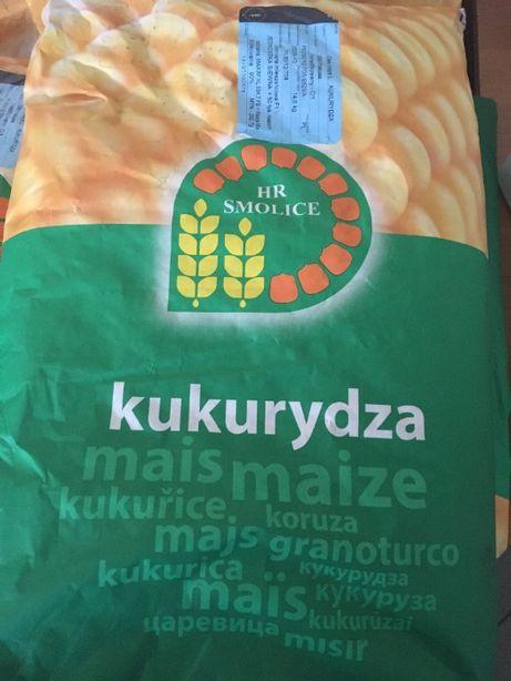 Kukurydza SM POKUSA FAO 230 50.000 nasion