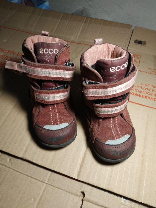 взуття черевички Ecco 20р Львов - изображение 1