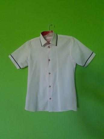Koszula 152 cm