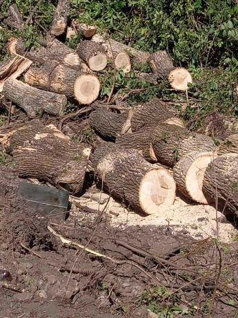 Дрова твердых пород - ясень, дуб