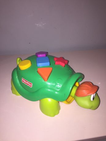 Zolw fisher price