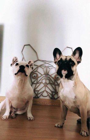 Bulldog Francês - Bull terrier - Dobermann - Beagle - peça decorativa