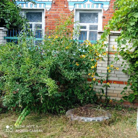 Продам жилой дом пгт.Старый Мерчик, Харьковская область.