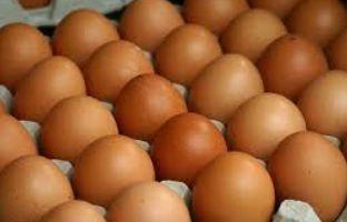 Мастер Грей яйця