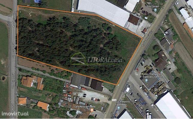 Terreno industrial para arrendamento - Cacia