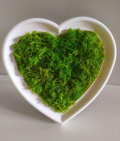 Dekoracja. Ramka serce z mchem chrobotkiem zielony, czerwony