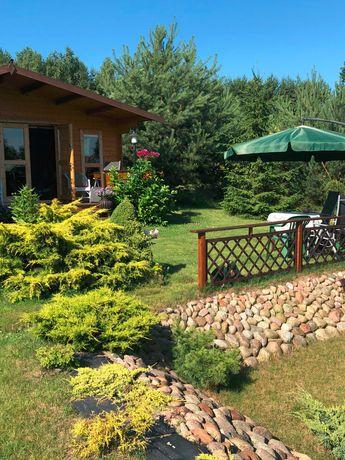 Działka rekreacyjno-budowlana-Staw -2 domki-80km od W-wy