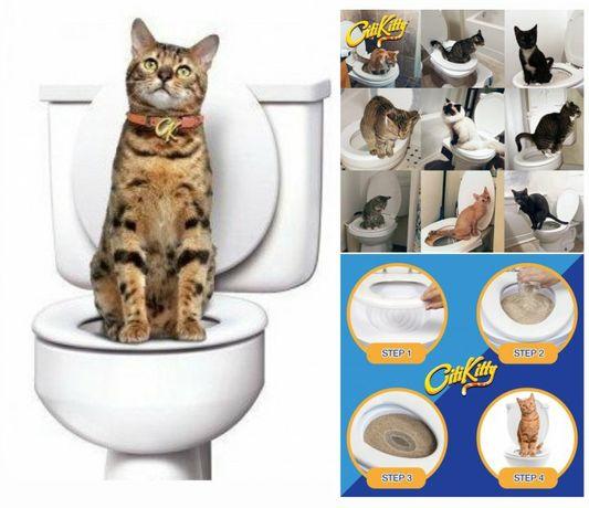 Kit treino - Ensinar gatos a ir à sanita NOVO