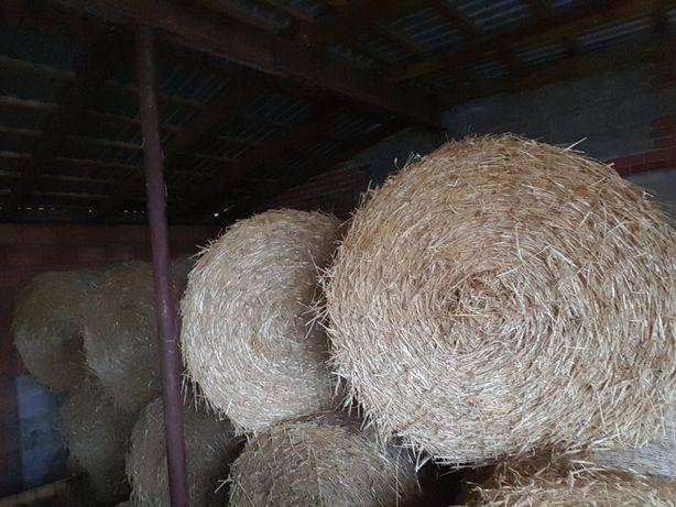 Sucha słoma ze stodoły.