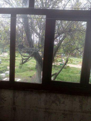 Продается 1 ком.квартира село Старое Бориспольский р-н, Киевской обл.