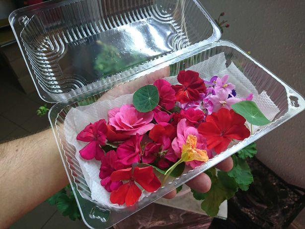 Їстівні квіти асорті