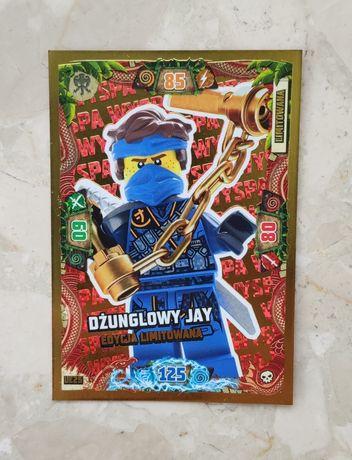 Karta LEGO Ninjago
