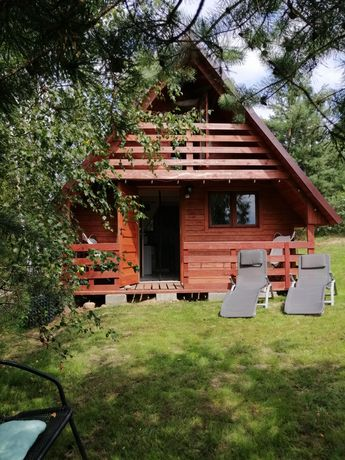 Domek na Kaszubach,Mały, las, grzyby,nocleg,