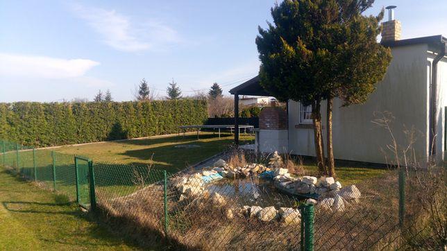 W TRAKCIE FINALIZACJI - ogródek działkowy przy promenadzie Niemena