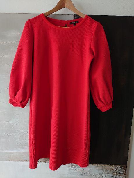 Sukienka Massimo Dutti rozmiar S czerwona