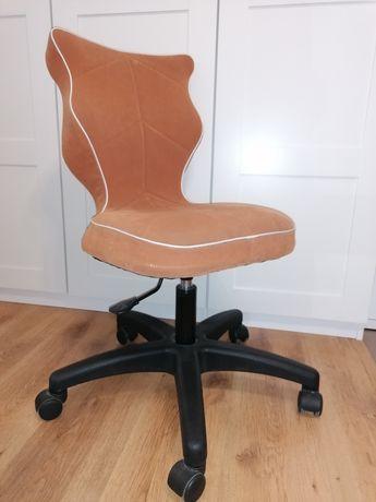 Krzesło obrotowe ENTELO