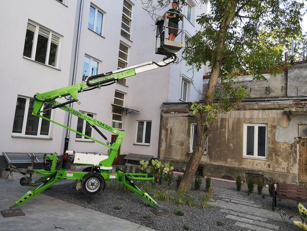 Wycinka drzew, profesjonalna DARMOWA WYCENA