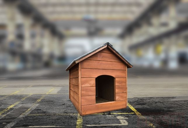 Buda dla psa małej rasy → beagle, border collie, buldog rozmiar L