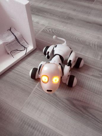 Интерактивная собака-робот