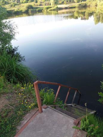 Сдам дачу на берегу озера. Супер природа и отдых. 17 км от Харькова