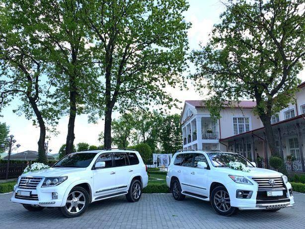 Весільний кортеж, авто на весілля, машины на свадьбу