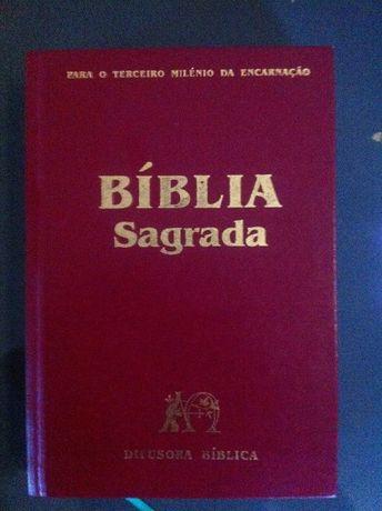 Bíblia Sagrada como nova