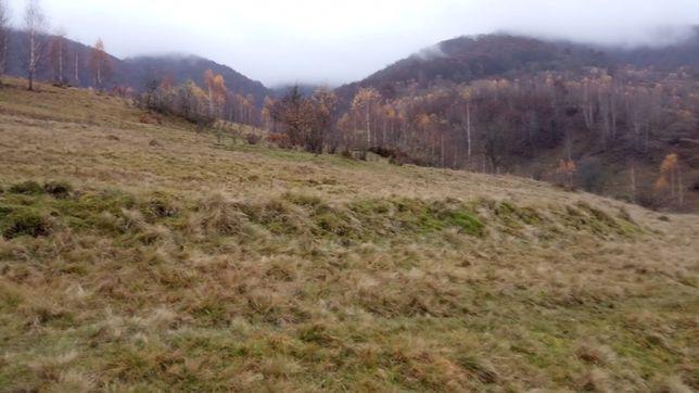 Продам земельну ділянку в Закарпатській обл. с.Колочава 36 соток