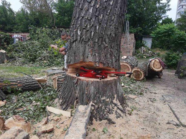 Удаление, валка дерева частями