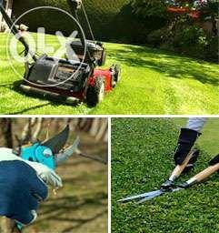 Pielęgnacja Ogrodów Usługi Ogrodnicze Wertykulacja trawników