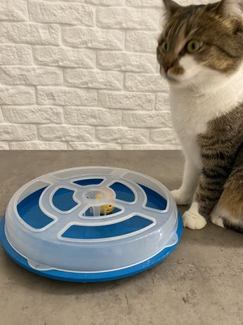 Интерактивная игра для котов