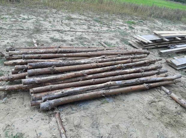 Stemple drewniane budowlane 2,5m ok. 100 szt.