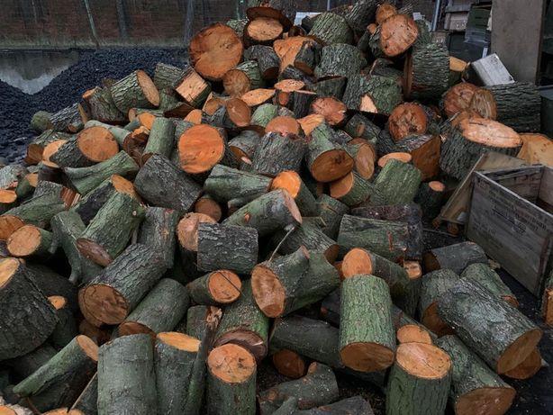 Drewno opałowe iglaste i liściaste