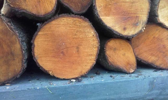 Drewno olcha , pyszny grill