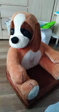 Fotel pies rozkładany