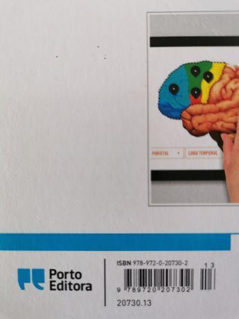 Caderno de fichas de Educação Visual 5ºe 6º anos