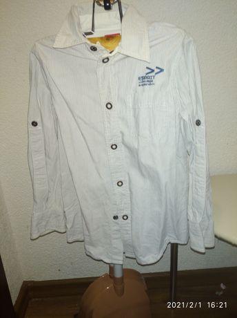 Сорочка.кофта.блуза