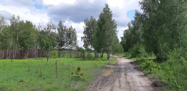 Продаж ділянки 6 га на трасі Київ-Чернігів