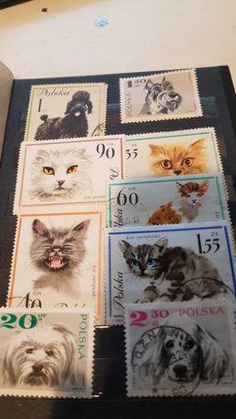 Klaser znaczki rózne