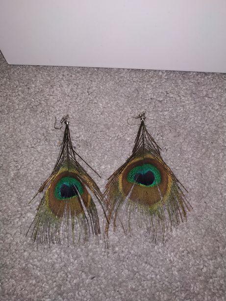 Kolczyki prawdziwe pawie pióra