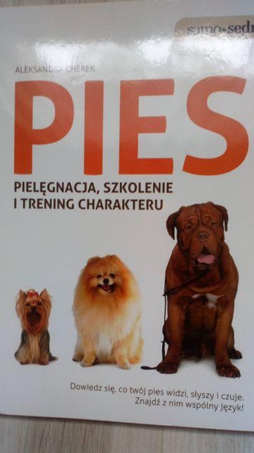 Pies-Książki (zabawa, trening, sztuczki, hodowla)