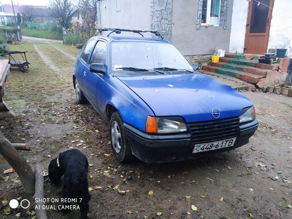 Opel Kadett небитий не крашаний все на ходу Почаев - изображение 1