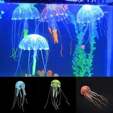Medusa para aquário