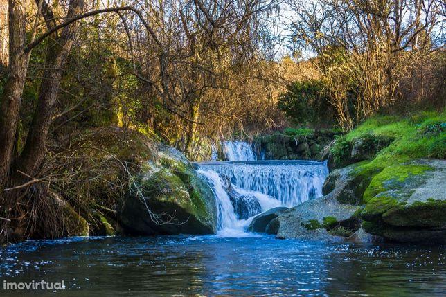 Quinta em  Midões, Tábua, com cerca de 6 hectares junto ao rio Cavalos