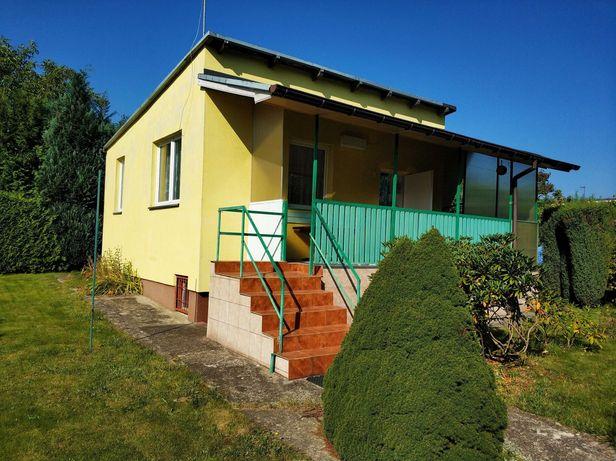 Działka ROD zadbana z murowanym domem