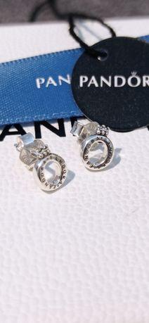 Kolczyki Pandora klasyczne z logo korona o srebro S925 ALE