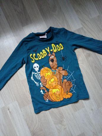 Lazurowa bluzka z długim rękawem Scooby Doo Haloween dynie 110