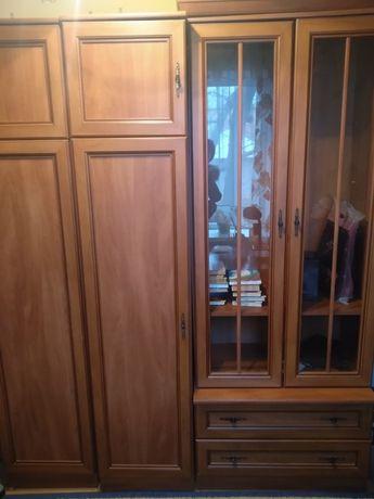 Плательный шкаф, стенка, стол, спальня