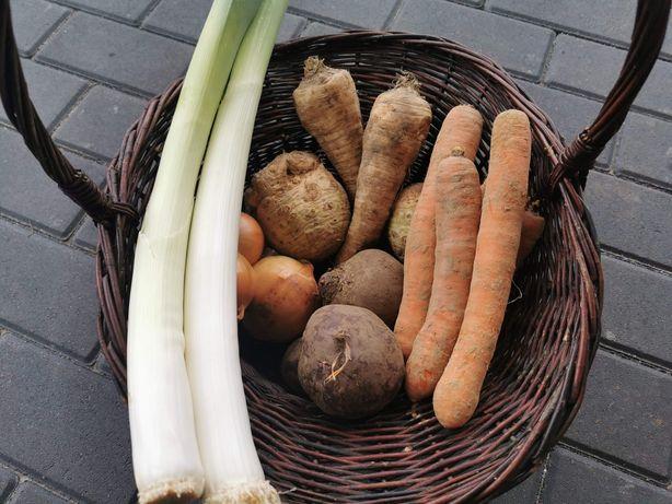 Smaczne zdrowe warzywa