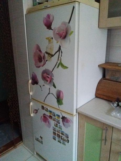 Холодильник snagė